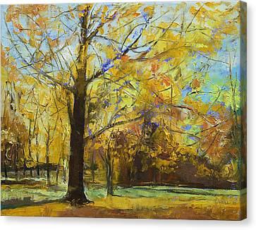 Shades Of Autumn Canvas Print