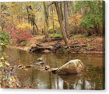Canvas Print featuring the photograph Shades Of Fall In Ridley Park by Patrice Zinck