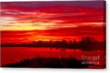 Shades Of Red Canvas Print by Robert Bales