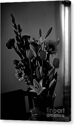 Shadow Light Flowers Canvas Print by Frank J Casella