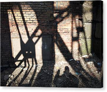 Shadowcat Canvas Print
