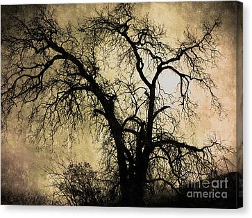 Bare Trees Canvas Print - Shadowlands 13 by Peter Awax
