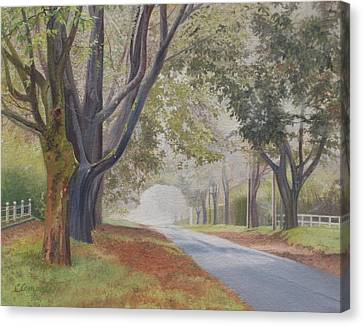 Shadow And Fog Down Beautiful Atlantic Avenue Canvas Print by Barbara Barber