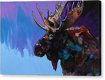 Shadows Canvas Print by Bob Coonts
