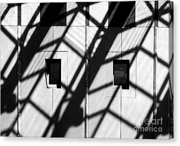 Shadows Canberra Canvas Print by Steven Ralser