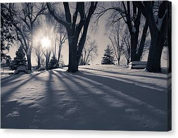 Shadows In The Park Canvas Print by Gloria Pasko
