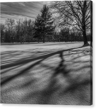 Shadows In The Park Square Canvas Print