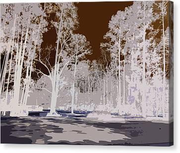 Shadows Canvas Print by Max Mullins