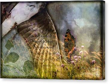 Shadows Of Yesterday Canvas Print by Liz  Alderdice
