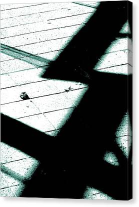 Shadows On The Floor  Canvas Print