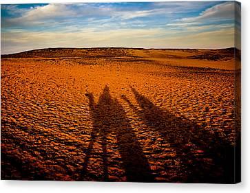 Shadows On The Sahara Canvas Print by Mark E Tisdale