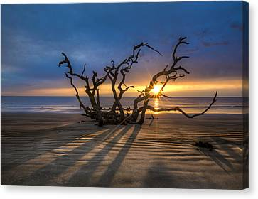 Shadows On The Sand Canvas Print by Debra and Dave Vanderlaan