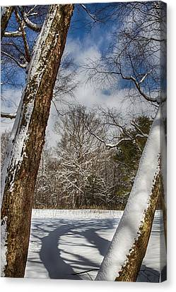 Shadows On The Snow Canvas Print by John Haldane