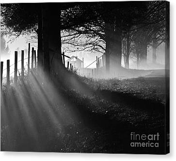 Canvas Print featuring the photograph Shadows by Paul Noble