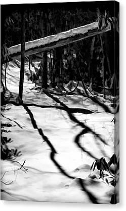 Shadows Point The Way Canvas Print by John Haldane