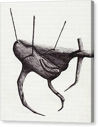 Shadows Terrestrial Canvas Print by Giuseppe Epifani