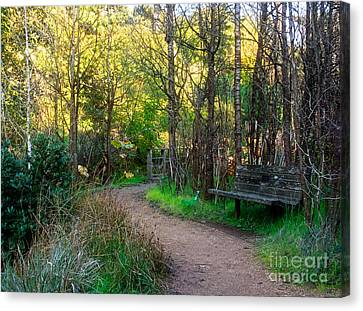 Canvas Print featuring the photograph Shady Dell by Kate Brown