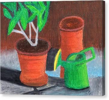 Shady Garden Corner Canvas Print by Bav Patel