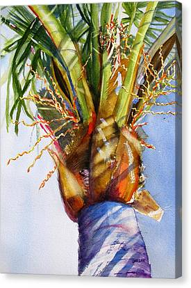 Shady Palm Tree Canvas Print by Carlin Blahnik