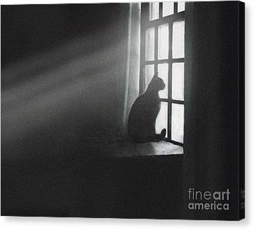 Shafts Canvas Print by Robert Foster