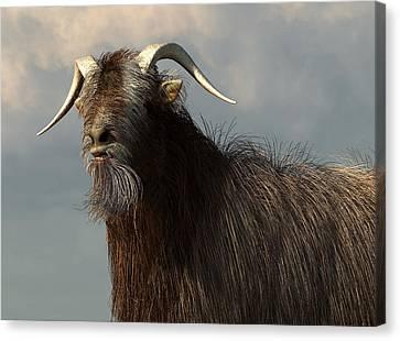 Shaggy Goat Closeup Canvas Print by Daniel Eskridge