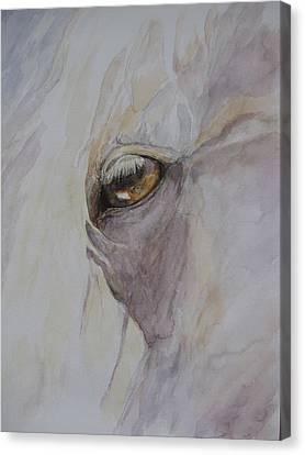 Shahteyna Canvas Print