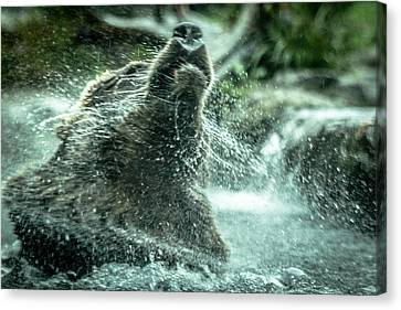 Canvas Print featuring the photograph Shake Shake Shake by Wade Brooks