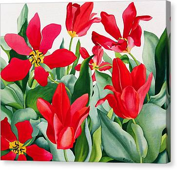 Shakespeare Tulips Canvas Print by Christopher Ryland