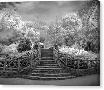 Shakespeare's Garden Infrared Canvas Print by Jessica Jenney