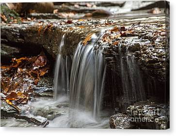 Eternal Flow Canvas Print - Shale Creek In Autumn by Darleen Stry