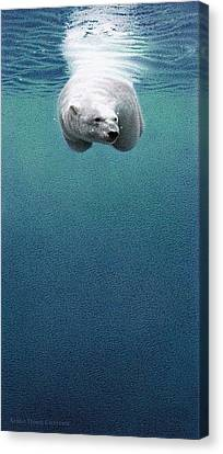 Snow Drifts Canvas Print - Shallow Dive by Doug Comeau
