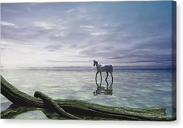 Horse Pastels Canvas Print - Shallows by Cynthia Decker