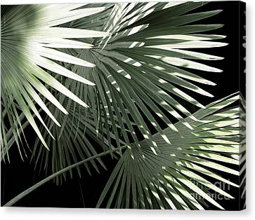 Shapes Of Hawaii Canvas Print by Ellen Cotton
