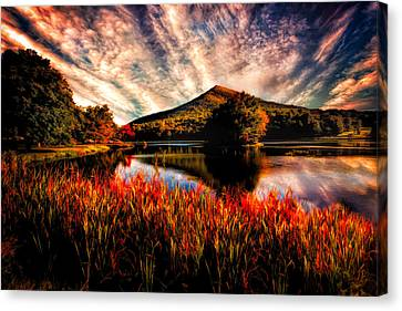 Sharp Top Canvas Print