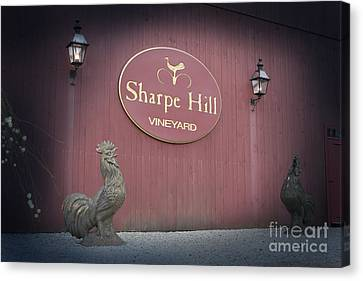 Sharpe Hill Vineyard Sign Canvas Print