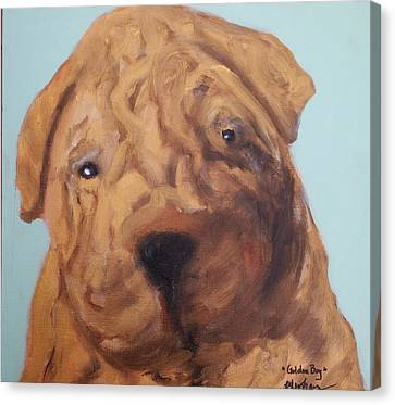 Canvas Print featuring the painting Sharpei - Golden Boy by Laura  Grisham