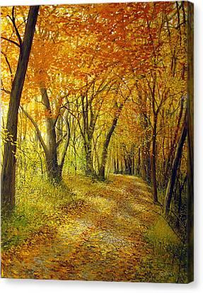 Sharpsburg Wander Canvas Print by David Bottini