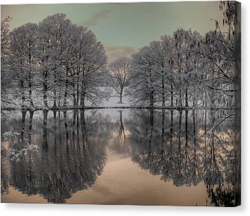 Shaw Nature Reserve Canvas Print by Jane Linders