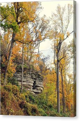 Shawee Bluff In Fall Canvas Print by Marty Koch