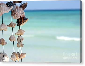 She Sells Seashells Canvas Print by Sophie Vigneault