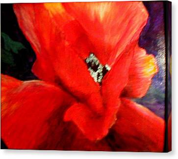 She Wore Red Ruffles Canvas Print