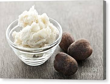 Shea Canvas Print - Shea Butter And Nuts  by Elena Elisseeva