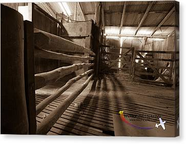Shearing Shed Canvas Print by Michael Wignall