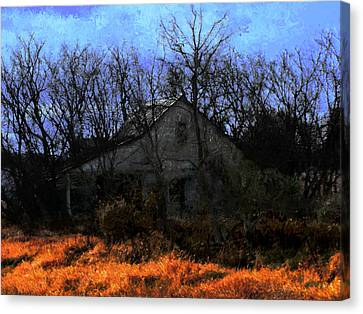 Shed In Brush On Hwy 49 North Of Waupaca Canvas Print by David Blank