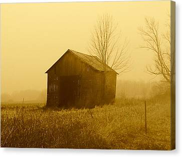 Shed In Field  Canvas Print by Michael L Kimble