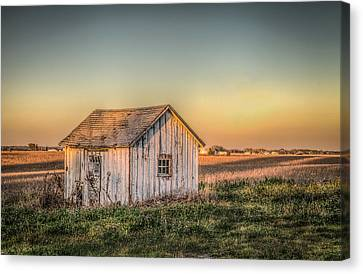 Shed Some Light Canvas Print by Ray Congrove