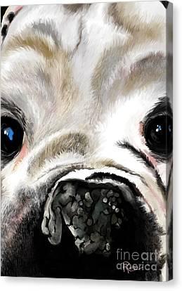 Canvas Print - Sheeba Bulldog by Maria Schaefers
