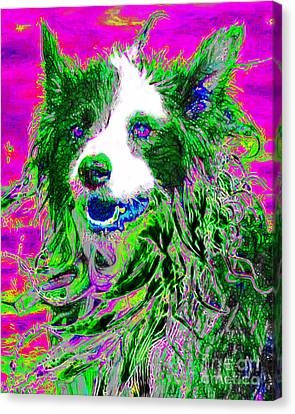 Sheep Dog 20130125v2 Canvas Print by Wingsdomain Art and Photography