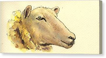 Sheep Head Study Canvas Print by Juan  Bosco