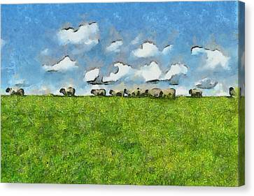 Sheep Herd Canvas Print by Ayse Deniz